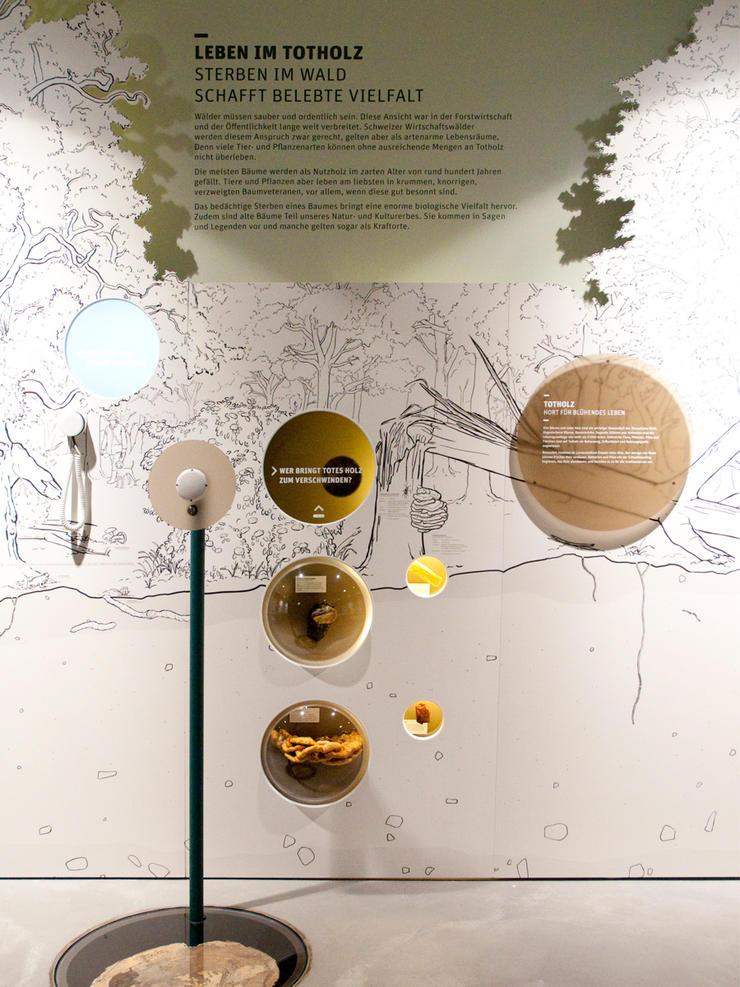 MartinBirrerDesign KosmosAuelenlandschaft 05 Martin Birrer Design Bern