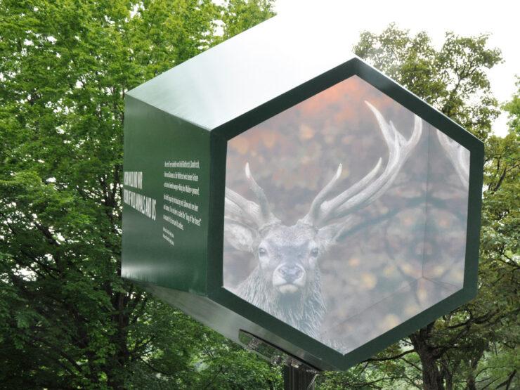 Martin Birrer Design Wild Und Wir 08 Martin Birrer Design Bern